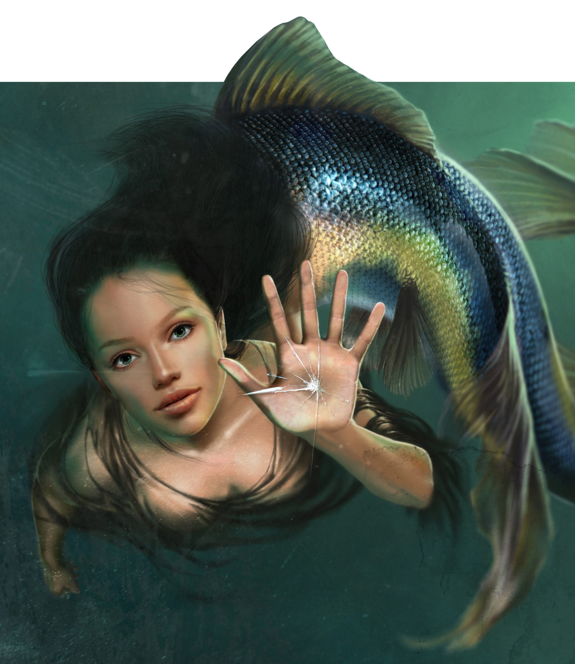 Illustrazione digitale, artwork, per libri e giochi di ruolo, progettazione personaggi fantastici - Mermaid, sirena